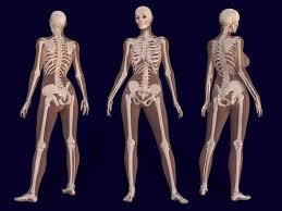 Good Bone Good Life