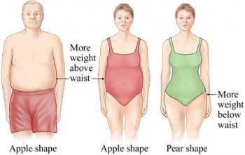 Apple Shape vs Pear Shape