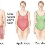 body shape apple vs pear