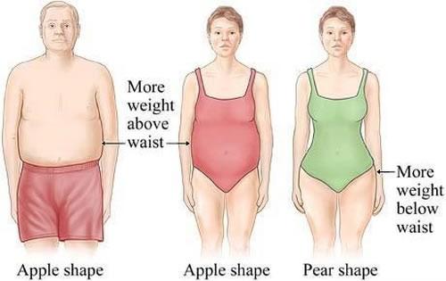 body shape apple vs pear